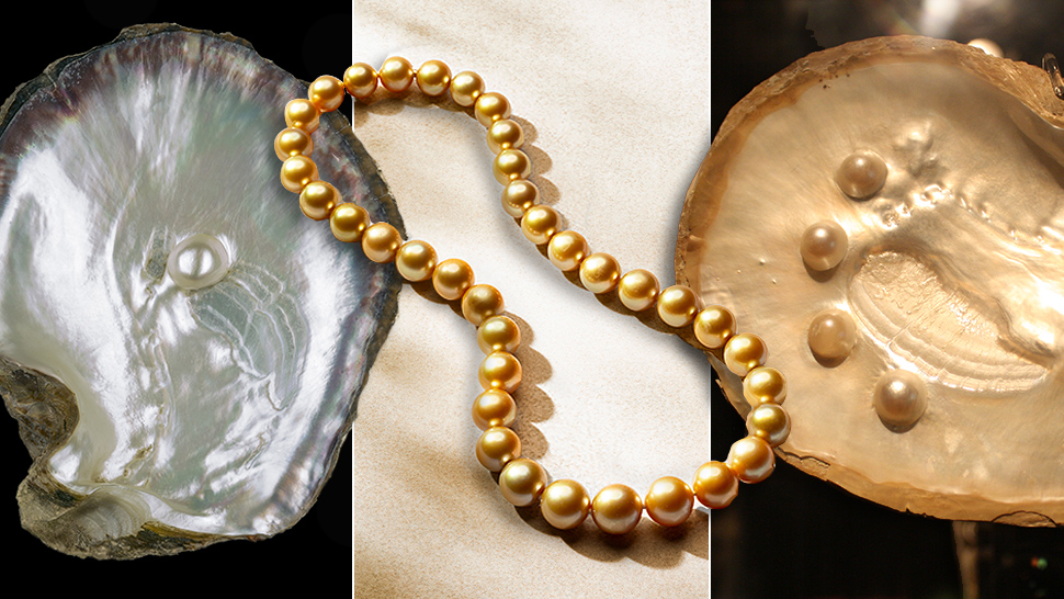Pearls Get Their Exotic Color Naturally from the Host and Environment